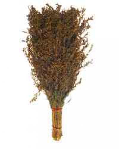 Веник из полыни (свежемороженный)