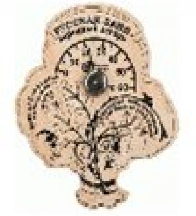 Термометр Пословицы 16*18 см для бани и сауны   уп5,  , 18052, Банные штучки