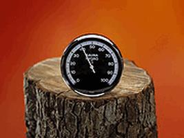 EOS Гигрометр для сауны круглый Д=100, 905522