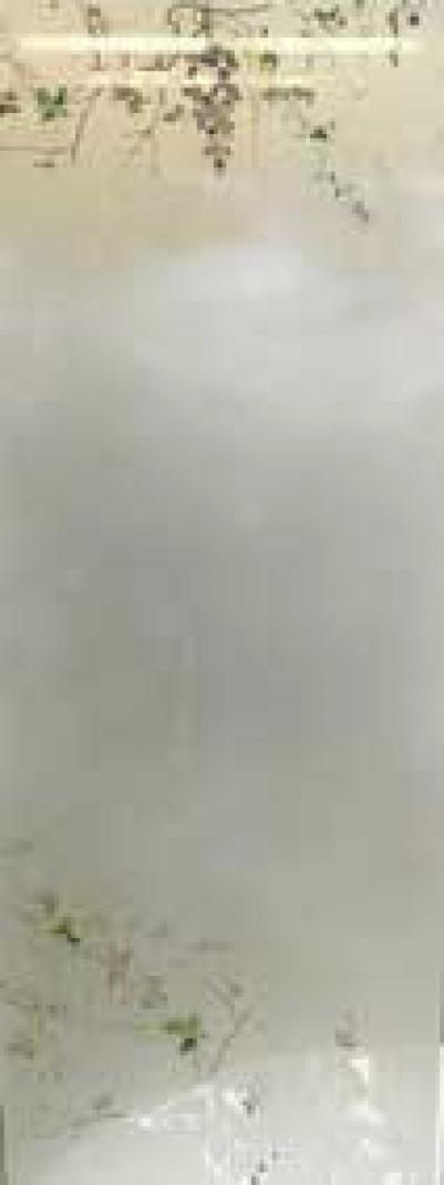 Дверь стеклянная, коробка 7х19 осина, фьюзинг, пескоструй, Виноград, стекло: бронза, серое, прозрачное