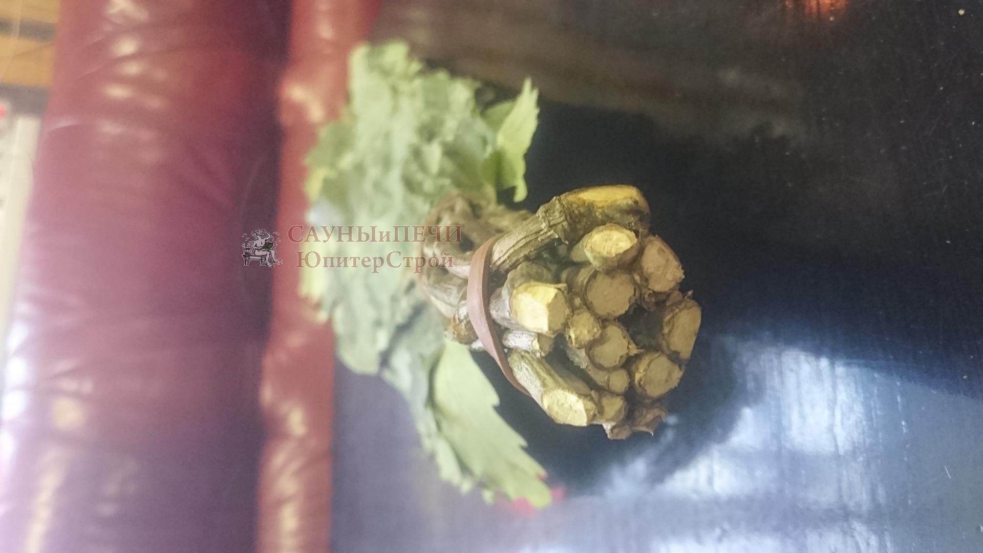 Веник дубовый(свежемороженный)